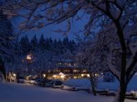 Hotel Kleins Wiese - Bad Fredeburg