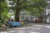 Ferienwohnungen Hof Köhne - Berghausen