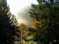 Fewo am Wald - Stormbruch