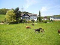 Ferienhof Pulte - Helden